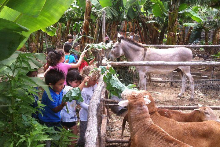 Visita Finca Ecológica